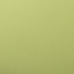 boston 25 (искусственная кожа, светло-зеленый)